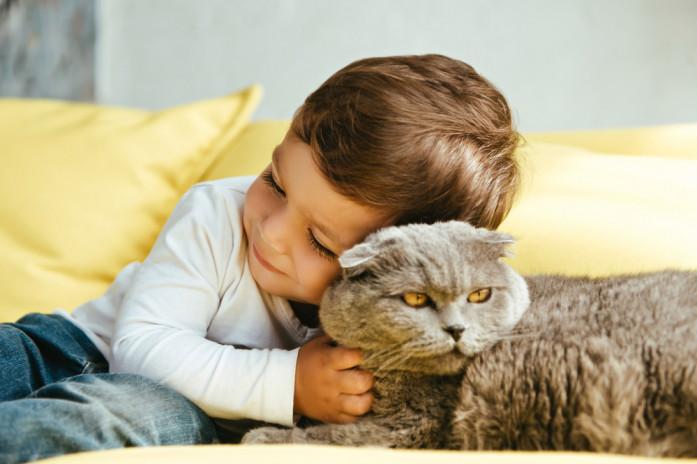 ребенок ухаживает за животным