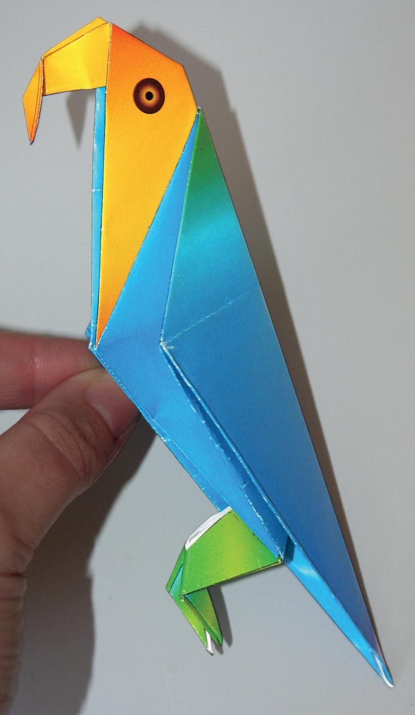 Как сделать из бумаги попугая схема фото 806